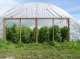 High tunnels help the farm extend their growing season.